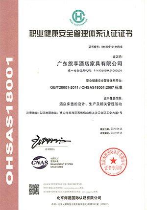 ISO18001职业健康管理体系